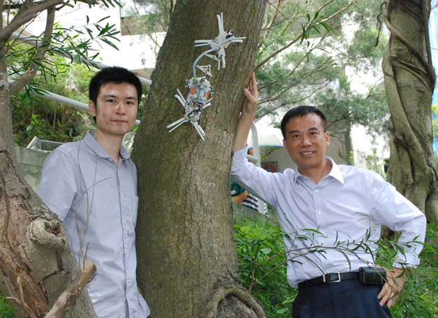 Prof. Xu Yangsheng (right) and Dr. Lam Tin-lun demonstrating Treebot, their new invention which could climb trees of any size and shape in a caterpillar-like motion to carry out a large variety of robotic duties.